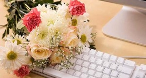 Tips for Buying Flowers Online For All Occasions – Show You Care