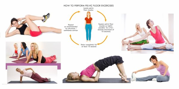 An Overview Of Pelvic Floor Exercises Mcm Outlet